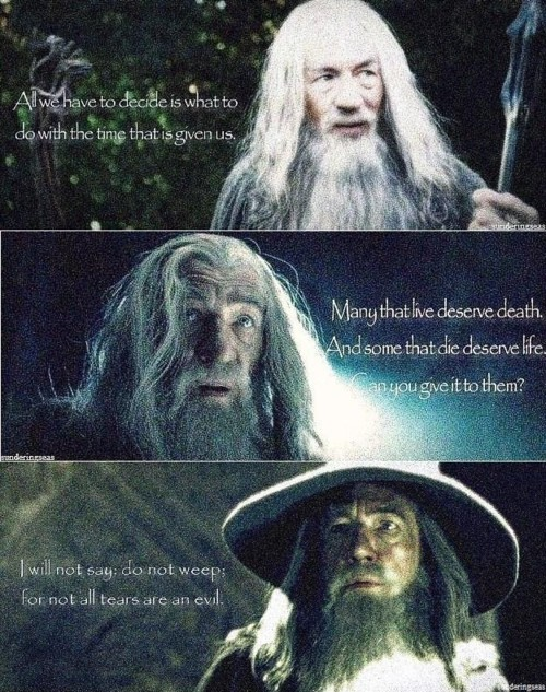 Day 17 – Favourite quote from your favourite book  CC