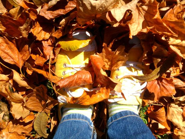 Look! It's my feet and some leaves! Not right now, obviously, but it was...